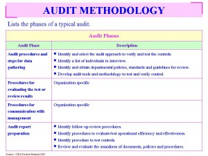 Lists the phases of a typical audit and Auditors