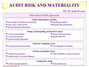 Risk-based Audit Approach and Auditors