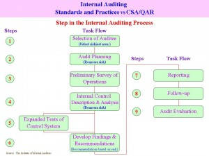 Internal Auditing Standards and Auditors & CEA