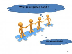 what is integrated audit